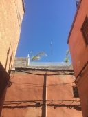 This is the view the Prince of Luxembourg sees when walking from his riad: my terrace!